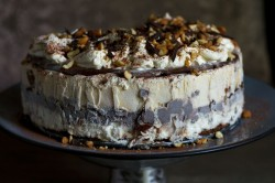 Peanut ice cream cake