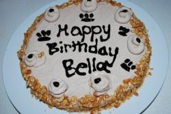Cake for dog