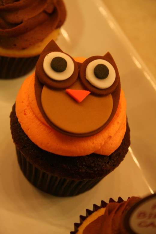 Cupcake with owl
