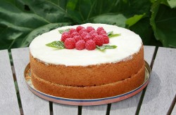 Raspberry and lemon Madeira cake