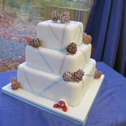 Anniversary cake with pine cones