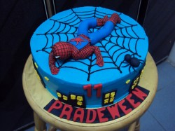 11th birthday Spiderman cake