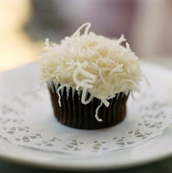 Chocolate cupcake with coconut