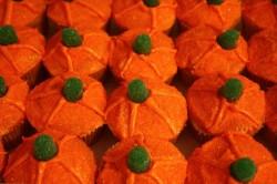 Cupcakes – pumpkin