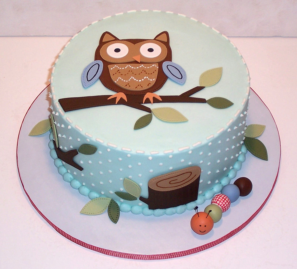 Cute Baby Cake Images : Pretty owl baby shower cake