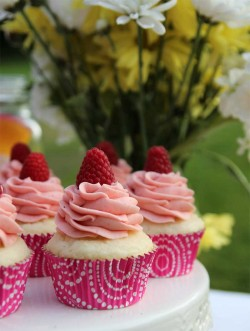 Vanilla cupcakes with rapsberry
