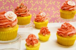 Vanilla cupcakes with raspberry buttercream