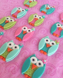 Awesome owl cupcake's toppers