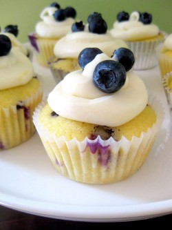 Lemon cupcake with blueberries