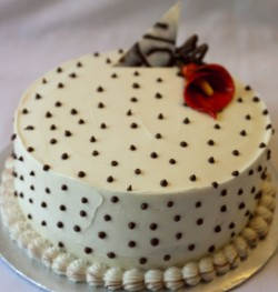 Vanilla cake with chocolate dots