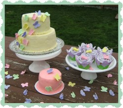 Cute cake with butterflies