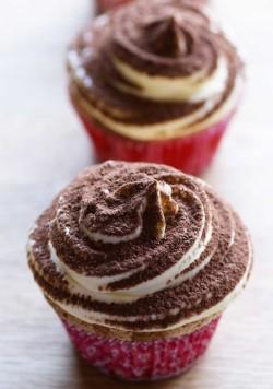 Tasty tiramisu cupcakes