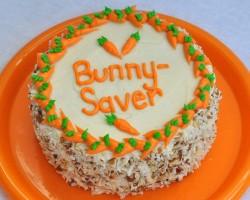 Carrot Bunny cake