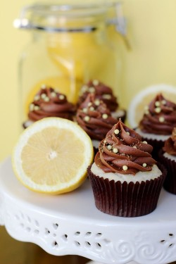 Chocolate and Lemon Cupcake