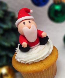 Christmas cupcake with Santa