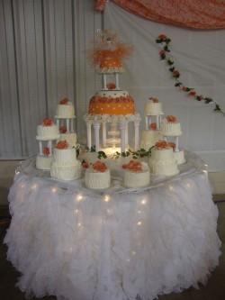 Large Quinceanera cake
