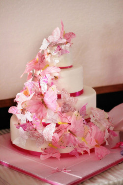 Amazing pink butterflie's cake
