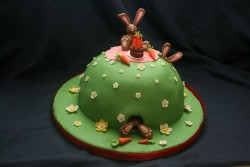 Cake – Bunny in the hill