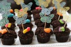 Dirty cupcakes with butterflies