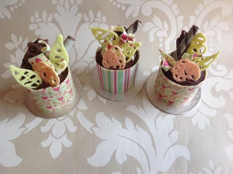 Chocolate mini cakes