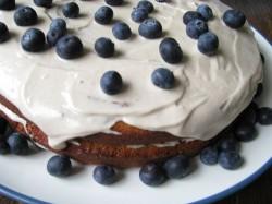 Coconut Vanilla Cake