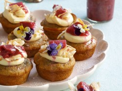 Rrhubarb Cupcakes