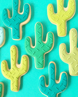 Sugar cookies – cactus