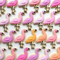 Sugar cookies – flamingos