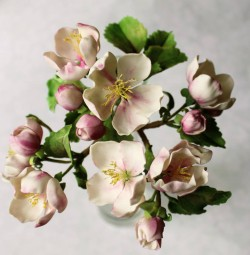 Sugarcraft-  Blooming Apple Tree