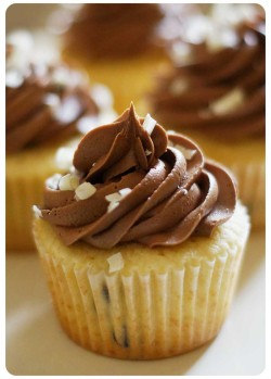 Vanilla Cupcakes with Chocolate