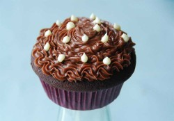 Chocolate Cupcakes Idea