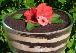 Dirt cake with flower