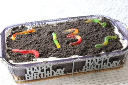 Happy Birthday Dirt Cake