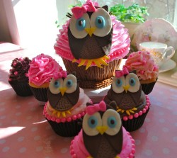 Birthday Cupcakes with Owl