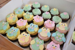 Colored Owl Cupcakes