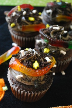 Dirt Cupcakes with Worms