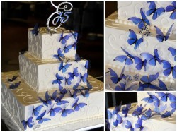 Quinceanera Cake With Butterflies