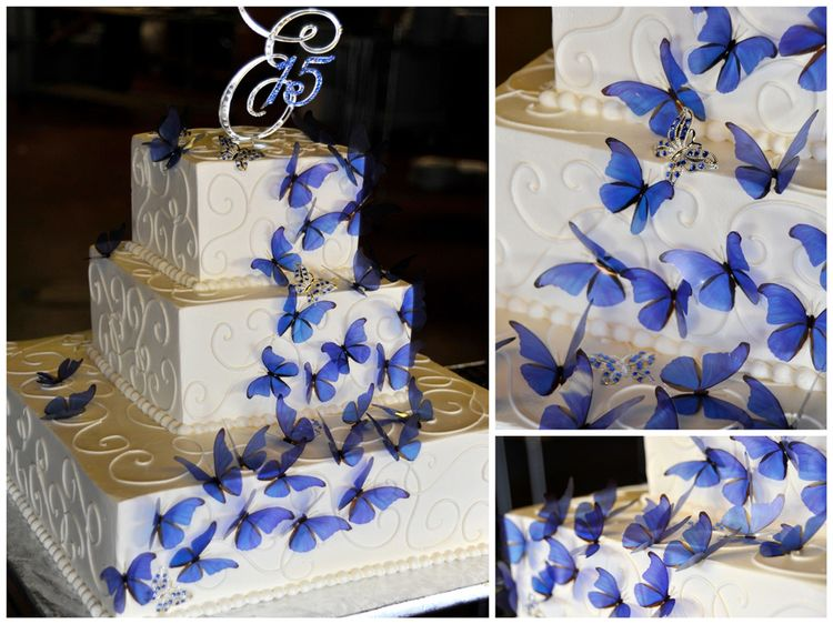Cake Decorating Ideas For Quinceanera : Quinceanera Cake With Butterflies