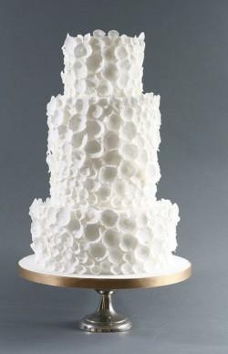 White Amazing Cake